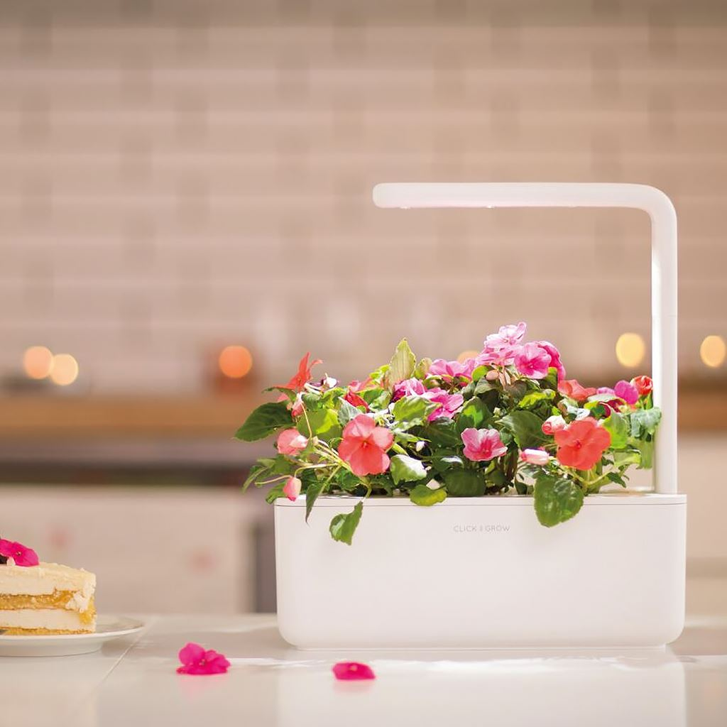 Click and Grow Smart Garden 3 Start kit - grå