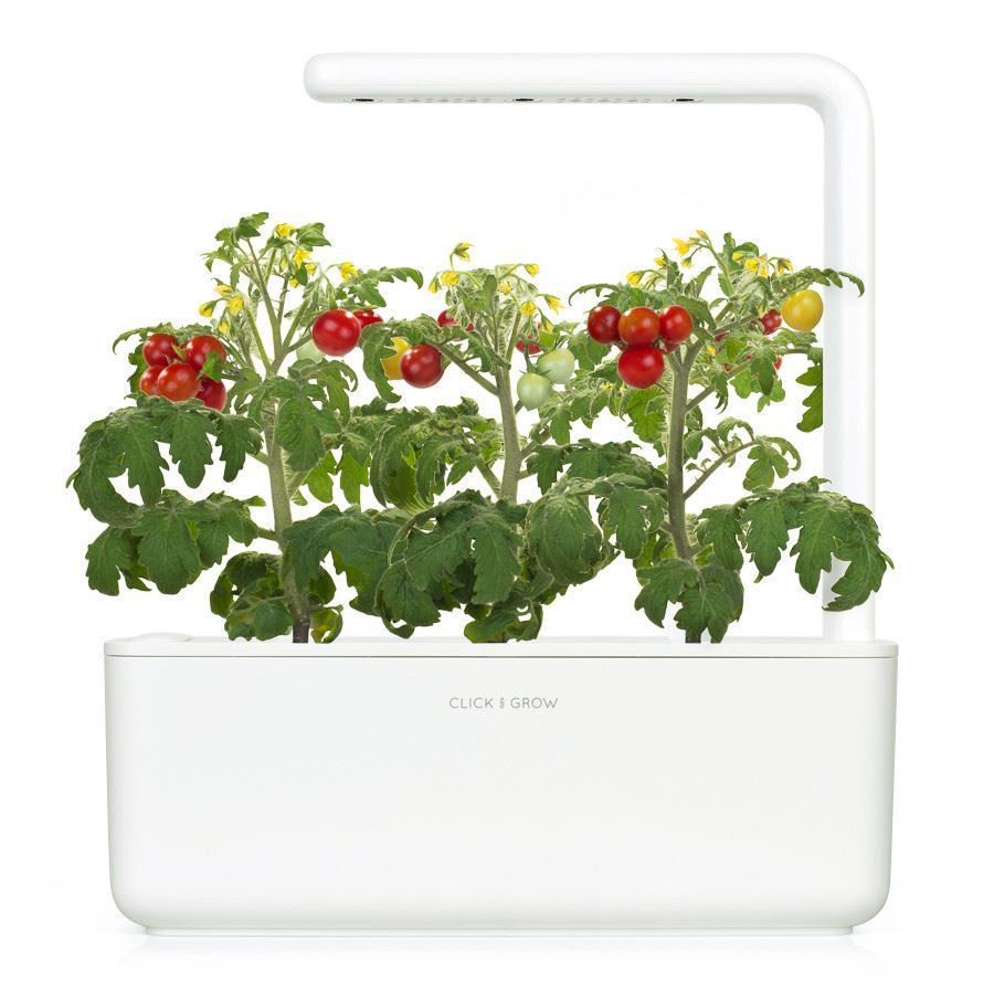 Click and Grow Smart Garden 3 pak refill - tomater